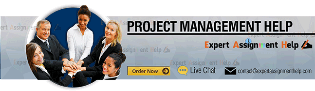 project management assignment help usa u k