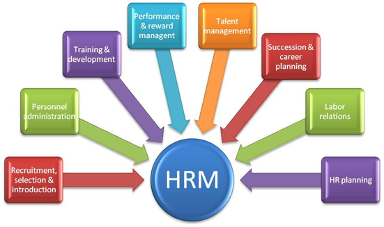 human resource management roles
