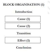 Block organisation 205*211