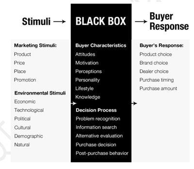 Black Box Model 400*350